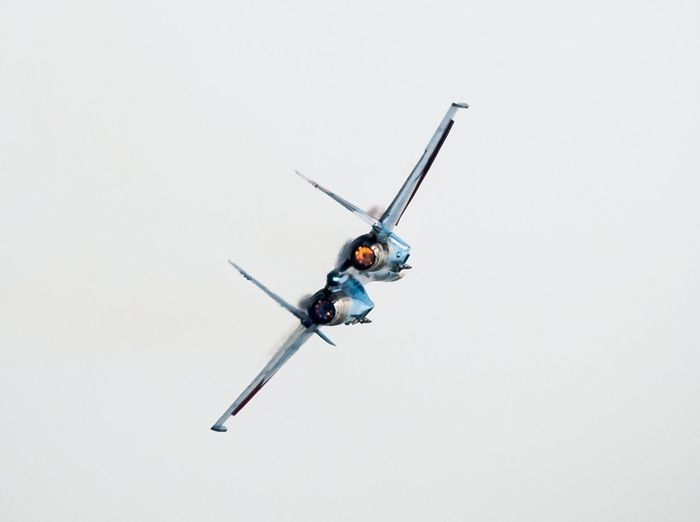 SU-27 Low Angle View Airport Copy Space Flying One Animal Animal Themes Studio Shot No People Clear Sky Insect Day Outdoors Nature White Background