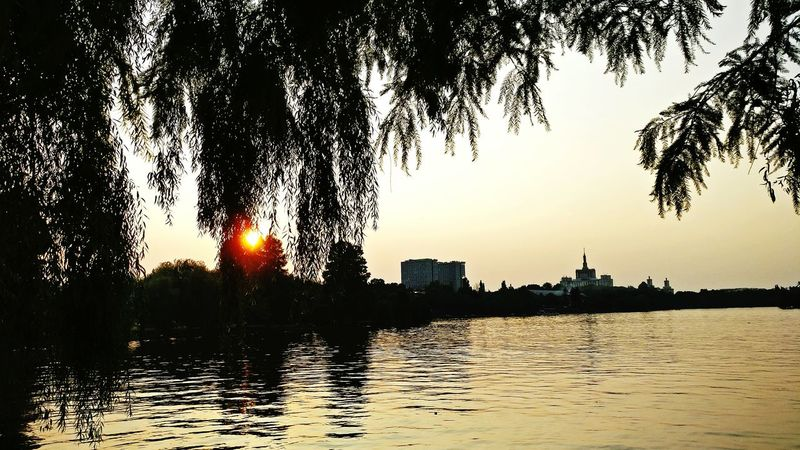 Herastrau Park București / Bucharest Relaxing Sunset Silhouettes Check This Out Lake View