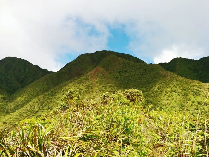 Hike Scenery Hawaii Mountain Sky K2 to the top!