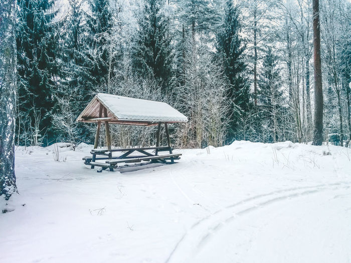 Shopping Cart Snow Cold Temperature Winter Snowing Deep Snow Snowcapped Snowfall Extreme Weather Ski Track Calm Snow Covered Weather Frozen Covering Powder Snow Snowcapped Mountain Ski Lift Tranquility Snowdrift Skiing Icicle Season  White Cold Tree Trunk Empty Ski Resort  Glacial Bare Tree