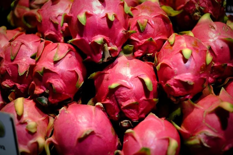 drgon fruit Dragon Fruit Red Prickly Pear Cactus Full Frame Fruit Close-up Food And Drink