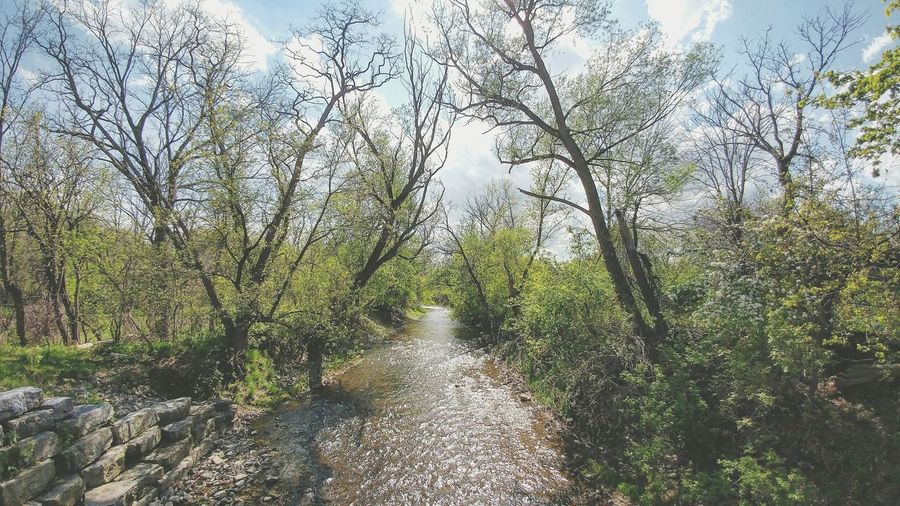Spencer Creek Trail First Eyeem Photo