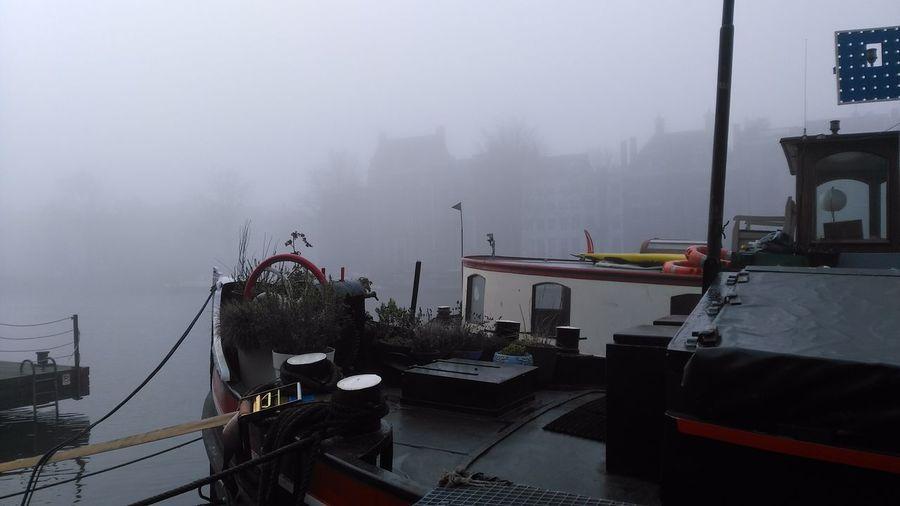 Fog Nautical