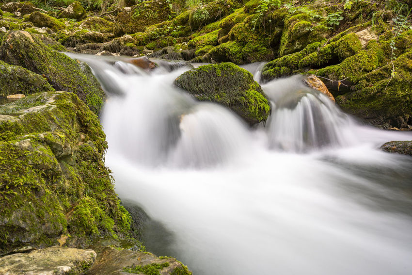 Bigar Waterfall EyeEmNewHere Romania Beauty In Nature Bigar Bigar Falls Blurred Motion Flowing Flowing Water Forest Land Long Exposure Motion Nature No People Outdoors Plant Rainforest River Scenics - Nature Stream - Flowing Water Tree Water Waterfall Waterfalls