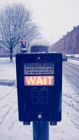 Wait.......... Hanging Out Taking Photos Hello World GLASGOW CITY Snowy Snow Snow ❄ Glasgow  Scotland Walking Around Snowing Glasgow Streets Taking Photos Wait Waiting ... Traffic Traffic Lights Traffic Sign Traffic Signal Traffic Signals Crossing Crossing The Street Crosswalk