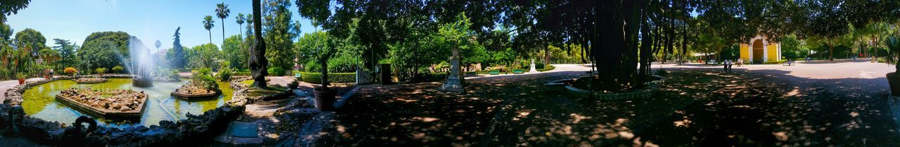 Giardino Inglese Palermo Sicily Italy Travel Photography Travel Voyage Traveling Mobile Photography Fine Art Panoramic Views Nature Monumental Trees Architecture Fountains Dramatic Shadows
