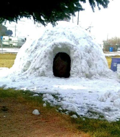 my buddies Igloo...:-) :-)Winter White By CanvasPop