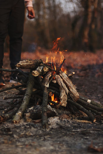 View of bonfire on wooden log