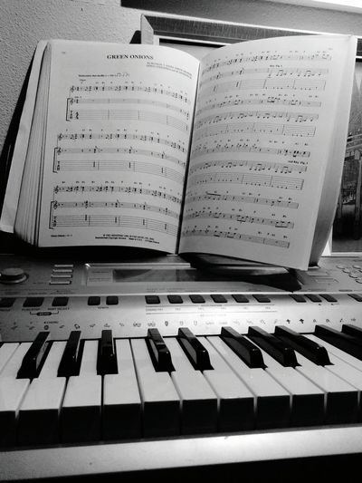 MusicNotes Piano Instrament Panel Musicians Music Brings Us Together Mixyourselfagoodtime EyeEm Selects Mix Yourself A Good Time The Week On EyeEm EyeEmNewHere Musicisinme Modern Love Done That.