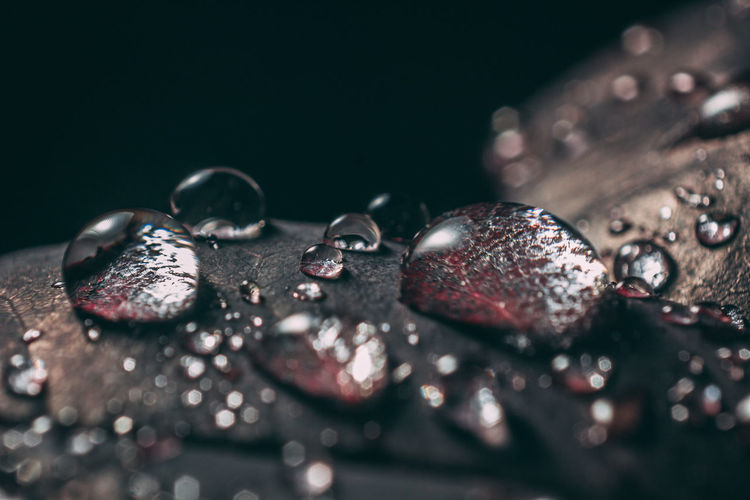 Close-up of water drops on table