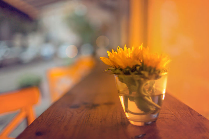 Close-Up Of Yellow Flowers In Glass On Wooden Table
