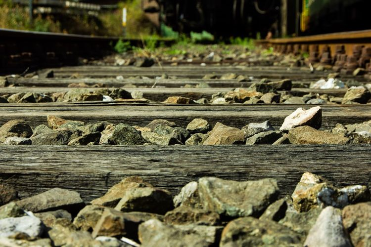 Rail EyeEm Best Shots EyeEm Selects EyeEm Gallery Railway No People Focus On Foreground Day Wood - Material Close-up Nature Track Selective Focus Transportation Tree Textured  Sunlight Solid Outdoors Railroad Track Rail Transportation Wood Timber Log Pattern