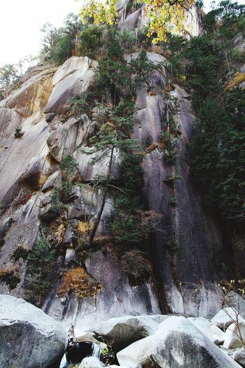 山梨県 甲府市 紅葉 昇仙峡 Japan Yamanashi Kōfu-shi Nature Rock Mountain Forest