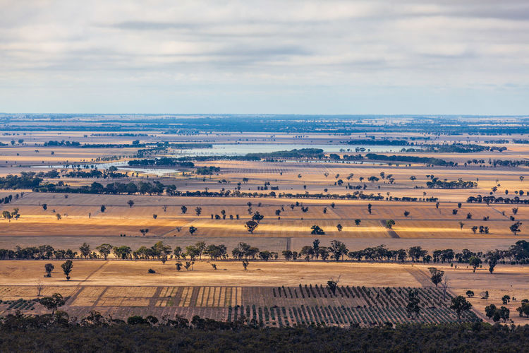 Cloudscape Landscape Aerial Agricultural Agriculture Australia Australian Beautiful Clouds Countryside Dirt Farming Farmland Field Grass Gravel Harvest Hills Land Meadows Nature Panorama Rural Scenic Trees Valley Victoria View Winding Yellow