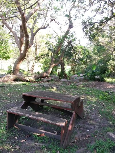 Old Abandoned Sitting Bench From My Point Of View No People 😇😇😇
