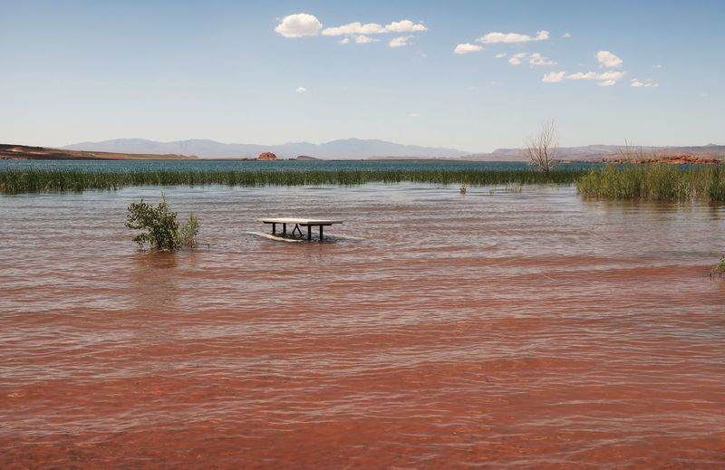 Landscape of a picnic table semi- submerged in Sand Hollow Reservoir in Utah Unusual View Picnic Table Sand Hollow State Park Travel Destinations Utah Colorful Nature Utah Scenery Water Sky Nature Scenics - Nature Tranquility Beauty In Nature No People Cloud - Sky Day Waterfront Tranquil Scene Plant Outdoors