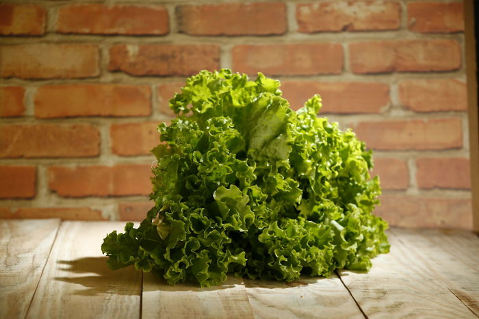 alface lettuce Alface Crespa Alface Vegetarian Food Herb Focus On Foreground Plant Leaf Plant Part Wood - Material Table No People Indoors  Wall - Building Feature Close-up Wall Brick Wall Freshness Brick Food And Drink Healthy Eating Vegetable Wellbeing Food Green Color Lettuce