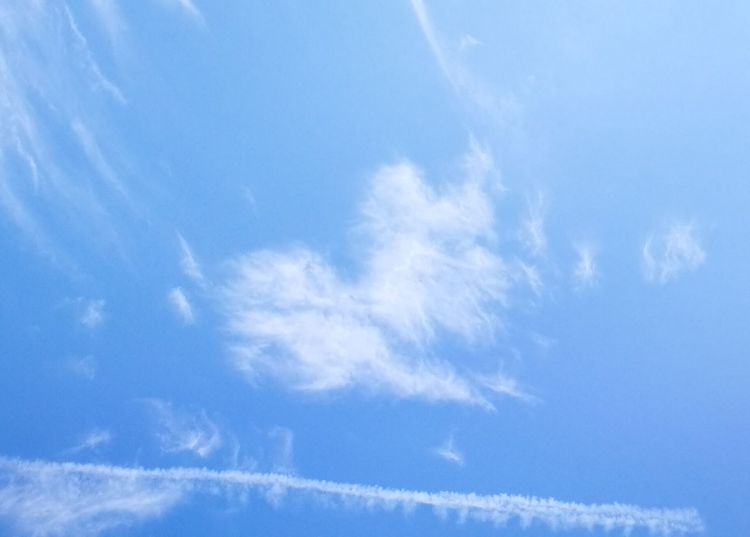 Blue Sky Cloud - Sky Nature Backgrounds Scenics Sky Only Day Outdoors No People Beauty In Nature Flying Vapor Trail Heart Shape