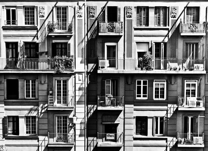 Vecinos. Ventanas Balcones Streetphotography Buildings City Ciudad PAISAJE URBANO Skycraper Edificios Barcelona Catalunya Catalonia Blancoynegro España