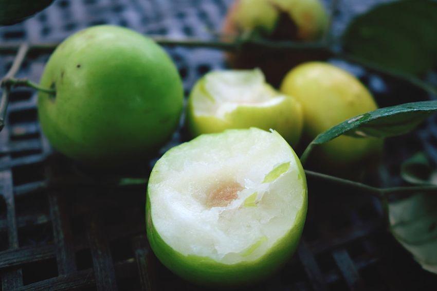 Tree Fruit Monkey Apple Nature Fruits ♡