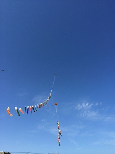 Low angle view of koinobori hanging against blue sky