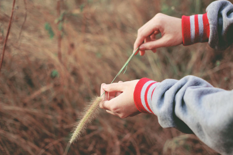 Human hand holding leaf with feeling hope Childhood Close-up Copy Space Day Finger Grass Focus On Foreground Grass Holding Hope Human Body Part Human Hand Leaf Leisure Activity Lifestyles Lonely Nature One Person Outdoors People Real People Fresh On Market 2017