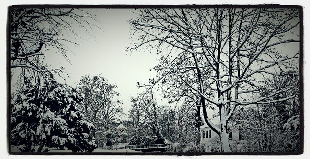 Winter Winter Wonderland Park Schlosspark