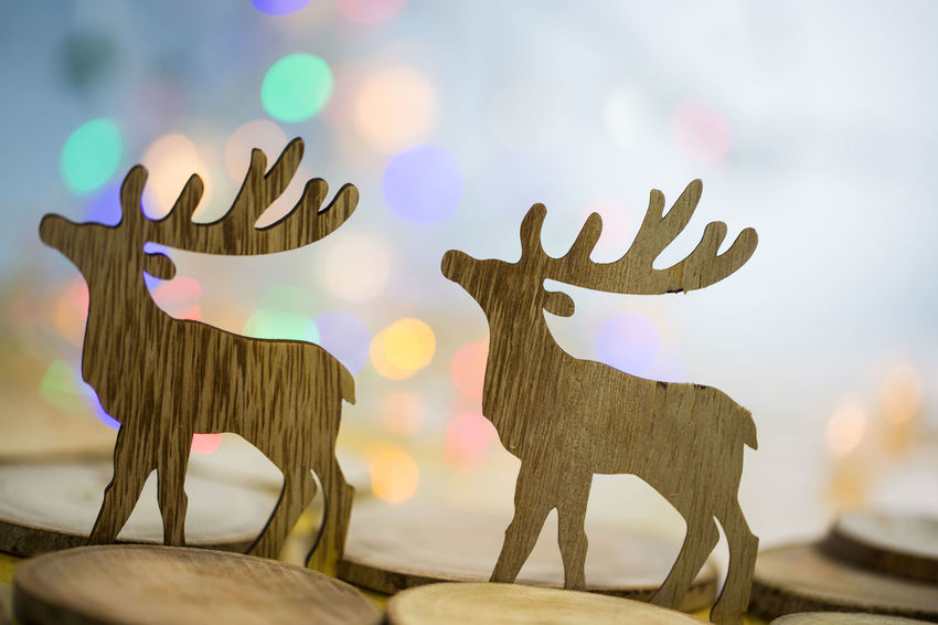Animal Animal Representation Animal Themes Animal Wildlife Art And Craft Creativity Day Decoration Deer Focus On Foreground Lens Flare Mammal Nature No People Reindeer Representation Sculpture Sky Table Wood - Material