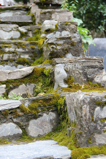 Mossy stone stairs Nature Outdoors Rock No People Stone Stairs Rock Stairs Moss Mossy Stone Mossy Rock Nature Stairs Nature First Eyeem Photo