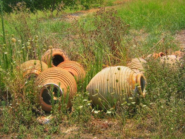 Grass Field No People Day Outdoors Nature Growth Hay Bale Amphoras