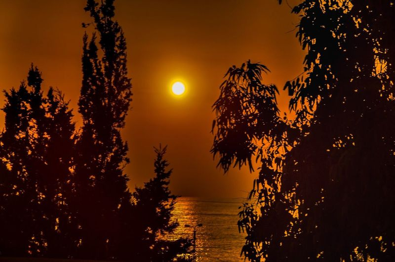 Beauty In Nature Sunset Orange Color Tranquil Scene Nature No People Sun Growth Outdoors Horizon Over Water