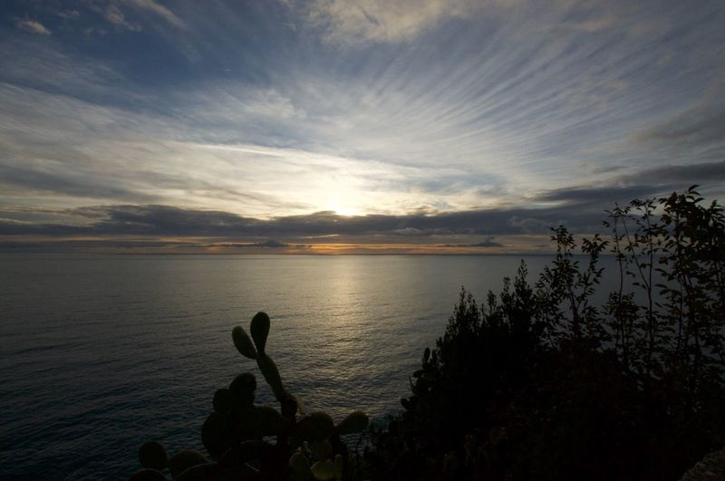 Sky Nature Cloud - Sky Beauty In Nature Sunset Water Scenics Corniglia Tranquility Outdoors Growth Tranquil Scene Tree Real People Day