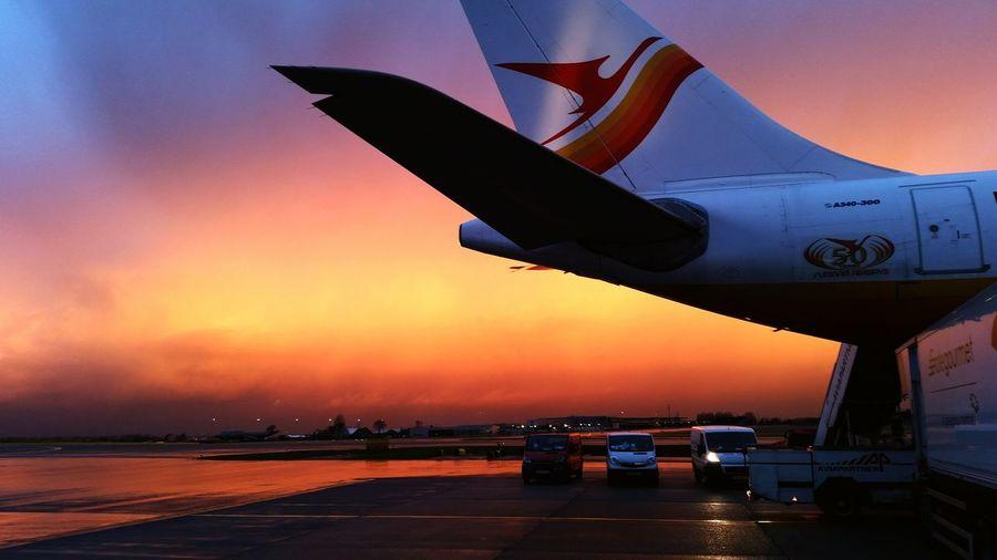 Surinam Airways Beautiful Sky Orange Sky Airplane