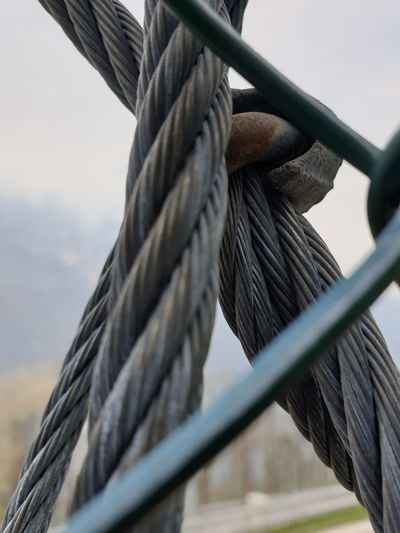 Low angle view of rope tied to wooden post