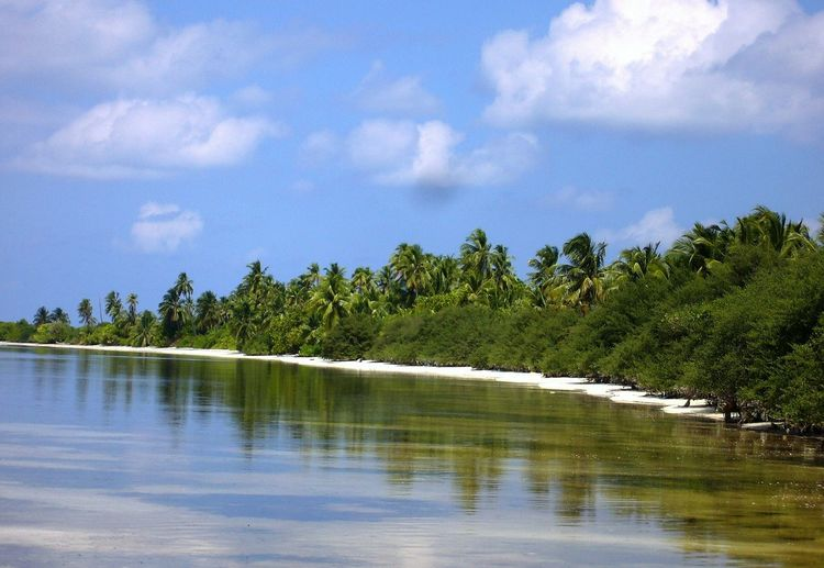 Bushi Island Maldives Beauty In Nature Day Malediven  Nature No People Outdoors Scenics Sky Tranquil Scene Tranquility Tree Water