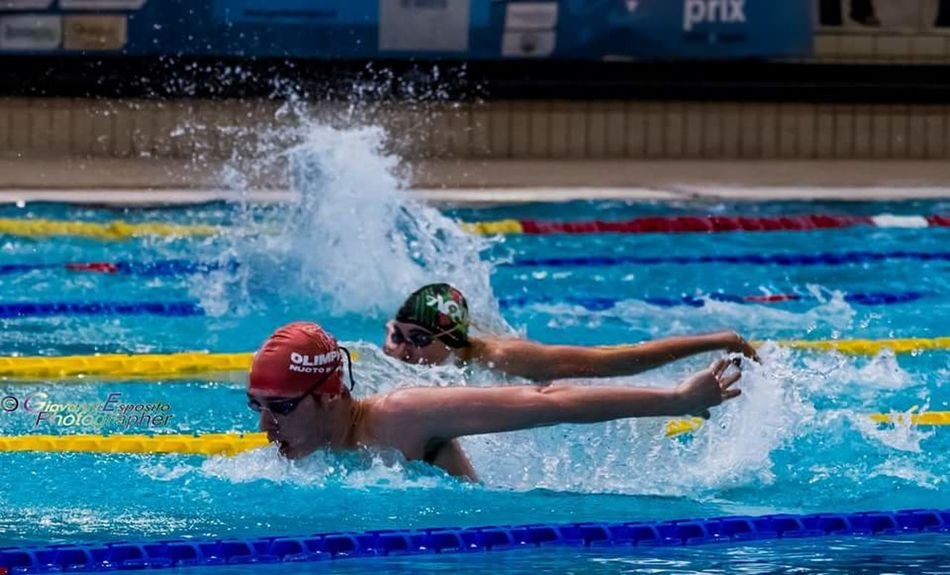 sincrono farfalla Swimming Pool Swimming Lane Marker Competition Swimming Water Sport Athlete Splashing Competitive Sport Motion Speed Adult Young Adult Only Men Aquatic Sport Sports Race Sportsman Sports Event  Men Vitality