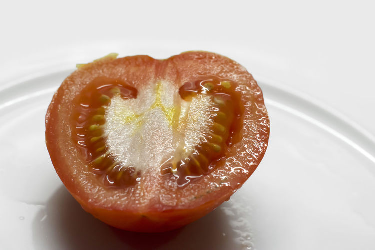 High angle view of orange slice in plate
