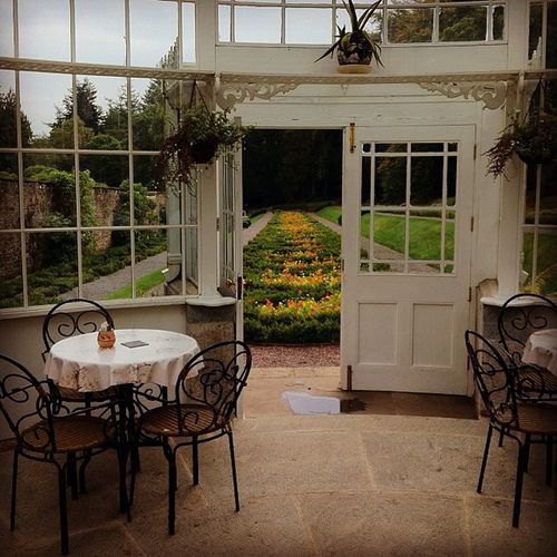 Tea Rooms Inistioge Woodstock Kilkenny Tearoom Gardens Flowers Dovecote