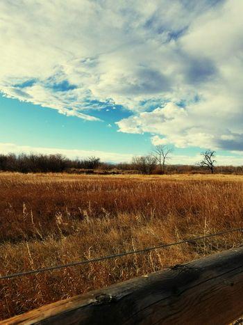 Cherry creek nature preserve Cloud - Sky Outdoors Life Is Beautiful DenverColorado