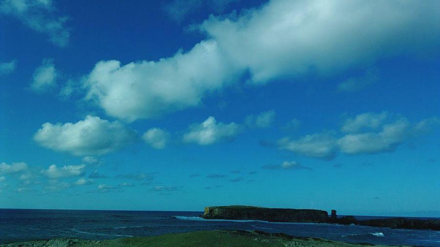 Cobalt Blue By Motorola Papoa Friends ❤ Dogs Blue Sky Bluesea