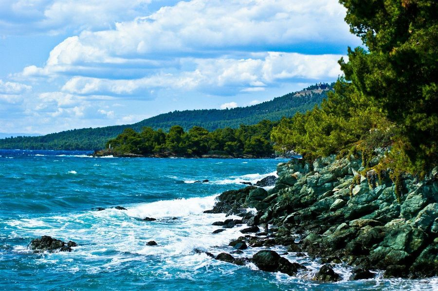 Sea Landscape Beach Beauty In Nature Nature Water Tree No People Greece Halkidikis
