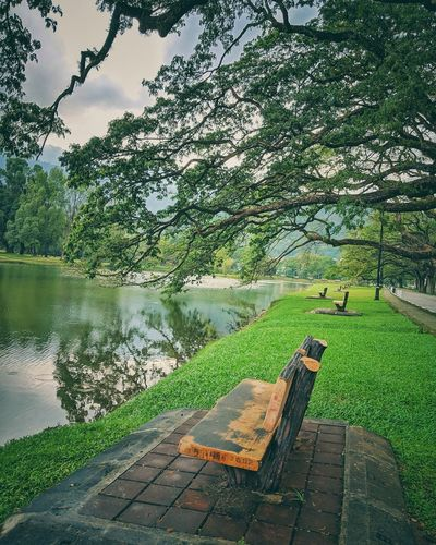 Scenic view of park by lake against sky
