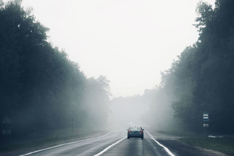 Trip to Belarus 🚘 Day 1 Road Trip Belorussia Belarus Traveling Travel Photography Travel Destinations Road Transportation Fog Tree The Way Forward Direction Sign Sky Road Marking Mode Of Transportation Nature Land Vehicle Marking Symbol Motor Vehicle Diminishing Perspective Car No People