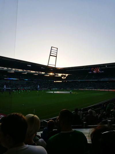 Stadium Sport Playing Field Soccer People Fussball Sports Venue Outdoors Grass Sky Day Werder Werder Bremen Bremen Germany Weserstadion