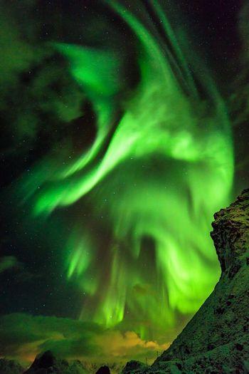 Aurora Aurora Borealis Beauty In Nature Outdoors Night Nature Norway Lofoten Norway Lofoten Islands Lofoten
