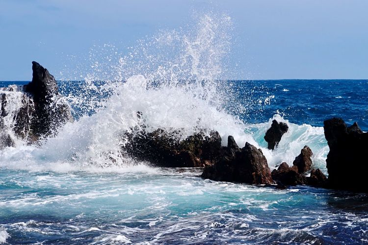 Pacific Ocean wave Beautiful Day Ocean View Ocean Hawaii Maui Pacific Ocean EyeEm Nature Lover Waves Crashing On Rocks Waves And Rocks Waves Crashing Sea Motion Wave Power In Nature Rock - Object Nature Water Beauty In Nature Outdoors Blue No People Clear Sky Day