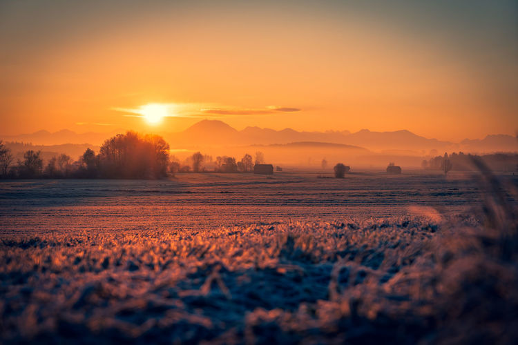 Winter is coming Colorful Nature Nature Photography Mountain Range Mountain Alps Moodygrams Mood Sunlight Sunrise Foggy Morning Foggy Fog Cold Temperature Germany Bavaria Winter Autumn Cold Tree Beauty Rural Scene Sunset Water Multi Colored Agriculture Dawn Gold Colored Sunlight Blooming