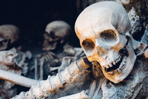 Naples Pompeii  Wanderlust Bone  Herculaneum History Human Skeleton Human Skull Natgeo Travel Destinations
