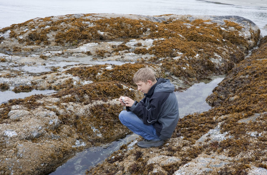 Teenage Boy photographing Sea Life in Tidal Pool - Long Beach, Pacific Rim National Park, Vancouver Island, British Columbia, Canada Adolescence  Adventure Boy British Columbia Canada Crouching Curiosity Digital Camera Happy Low Tide Nature One Boy Only One Teenage Boy Only Pacific Ocean Pacific Rim National Park Photographer Photographing Sea Life Taking Photos Teen Teenage Boys Teenager Tidal Pool Vacations Vancouver Island