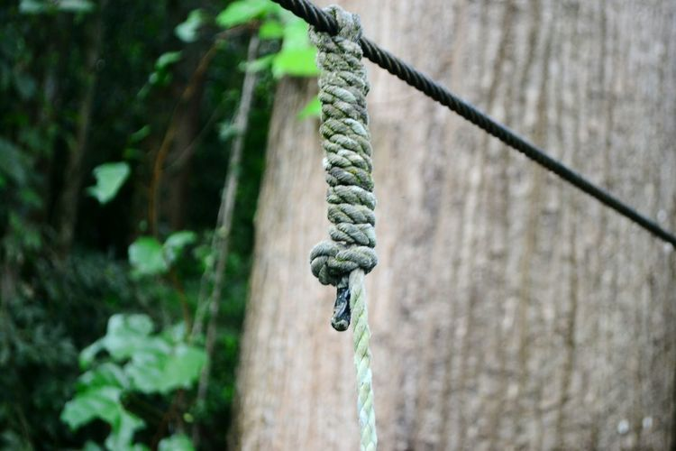 Close-up of chain hanging on rope against wall
